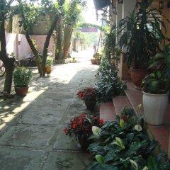 Отель Tigon Homestay Вьетнам, Хойан - отзывы, цены и фото номеров - забронировать отель Tigon Homestay онлайн фото 16