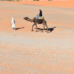 Отель Chez Belkacem Марокко, Мерзуга - отзывы, цены и фото номеров - забронировать отель Chez Belkacem онлайн приотельная территория фото 2