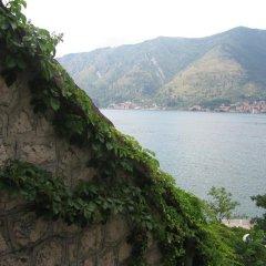 Отель Villa Iva Черногория, Доброта - отзывы, цены и фото номеров - забронировать отель Villa Iva онлайн приотельная территория