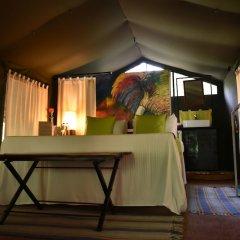 Отель Mahoora Tented Safari Camp All-Inclusive - Yala комната для гостей фото 4