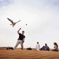 Отель Novotel Suites Mall of the Emirates развлечения