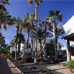 Отель Barcelo Castillo Beach Resort фото 16