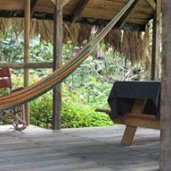 Отель Rios Tropicales фото 10