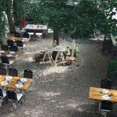 Отель Landgasthof Höfener Garten Германия, Нюрнберг - отзывы, цены и фото номеров - забронировать отель Landgasthof Höfener Garten онлайн питание фото 2