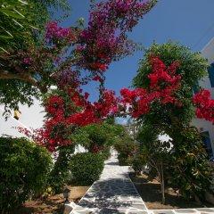 Отель Acrogiali фото 12