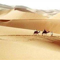 Отель Camel Safari Camp Марокко, Мерзуга - отзывы, цены и фото номеров - забронировать отель Camel Safari Camp онлайн пляж фото 2