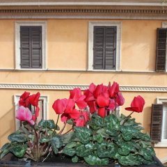 Hotel Garda балкон
