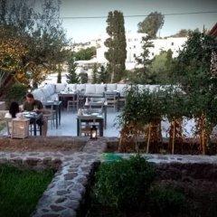 Отель Xanthippi Hotel Apartments Греция, Эгина - отзывы, цены и фото номеров - забронировать отель Xanthippi Hotel Apartments онлайн