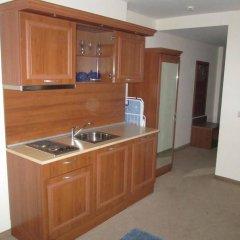Апартаменты Alexander Services Ski Apartments Банско в номере