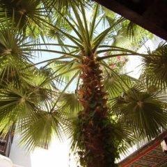 Отель Riad Magie d'Orient Марокко, Марракеш - отзывы, цены и фото номеров - забронировать отель Riad Magie d'Orient онлайн балкон