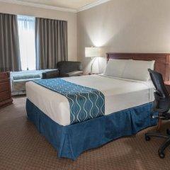 Отель Capital Hill Hotel & Suites Канада, Оттава - отзывы, цены и фото номеров - забронировать отель Capital Hill Hotel & Suites онлайн комната для гостей