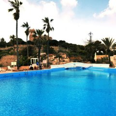 Beach Garden Hotel бассейн фото 3