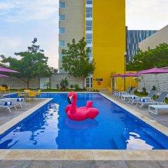 Отель City Express Mérida бассейн фото 2