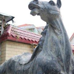 Отель Xiamen Cangma Inn Китай, Сямынь - отзывы, цены и фото номеров - забронировать отель Xiamen Cangma Inn онлайн с домашними животными