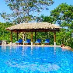 Отель Niyagama House Шри-Ланка, Галле - отзывы, цены и фото номеров - забронировать отель Niyagama House онлайн бассейн