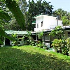 Отель Lievis Tourist Homestay - Anuradhapura