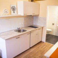 Апартаменты Lidicka Apartments в номере