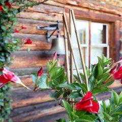 Отель Naturfreundehaus Davos Clavadel фото 2