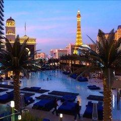 Отель 1BD1BA Apartment by Stay Together Suites США, Лас-Вегас - отзывы, цены и фото номеров - забронировать отель 1BD1BA Apartment by Stay Together Suites онлайн бассейн