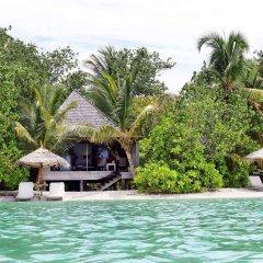 Отель Gangehi Island Resort бассейн фото 2