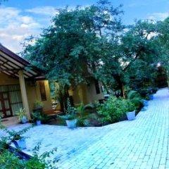 Отель Gregory's Bungalow Yala Шри-Ланка, Катарагама - отзывы, цены и фото номеров - забронировать отель Gregory's Bungalow Yala онлайн помещение для мероприятий фото 2