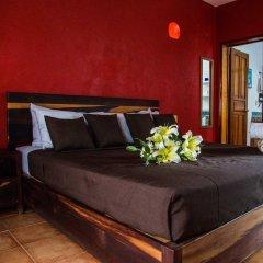 Отель La Armonia by Bunik Мексика, Плая-дель-Кармен - отзывы, цены и фото номеров - забронировать отель La Armonia by Bunik онлайн комната для гостей фото 3