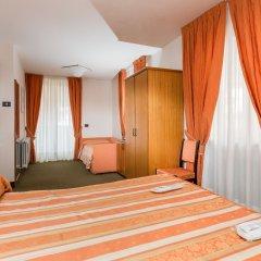 Hotel Alpina Пинцоло удобства в номере фото 2
