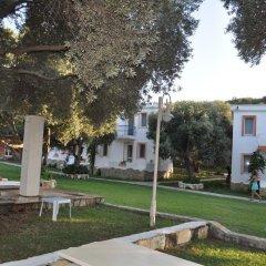 Club Mackerel Holiday Village Турция, Карабурун - отзывы, цены и фото номеров - забронировать отель Club Mackerel Holiday Village онлайн фото 12