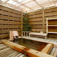 Отель Yamaguchiya Ryokan Насусиобара бассейн