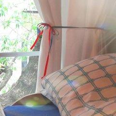 Tapir Hostel в номере