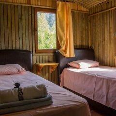 Отель Tree Houses комната для гостей