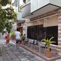Отель Гостевой Дом Crystal Crown Maldives Мальдивы, Северный атолл Мале - отзывы, цены и фото номеров - забронировать отель Гостевой Дом Crystal Crown Maldives онлайн гостиничный бар