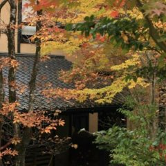 Отель Kurokawa Onsen Ryokan Wakaba Минамиогуни фото 3