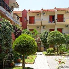 Отель Pelli Hotel Греция, Пефкохори - отзывы, цены и фото номеров - забронировать отель Pelli Hotel онлайн фото 6