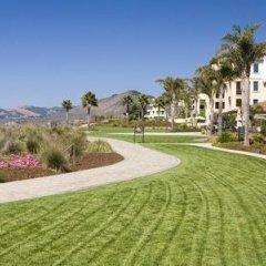 Отель Dolphin Bay Resort and Spa фото 8