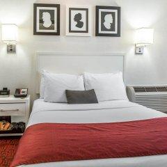 Отель The GEM Hotel - Chelsea США, Нью-Йорк - отзывы, цены и фото номеров - забронировать отель The GEM Hotel - Chelsea онлайн комната для гостей фото 4