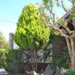 Отель Quinta De Tourais Португалия, Ламего - отзывы, цены и фото номеров - забронировать отель Quinta De Tourais онлайн фото 15