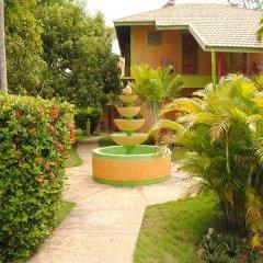 Отель Oasis Resort фото 9