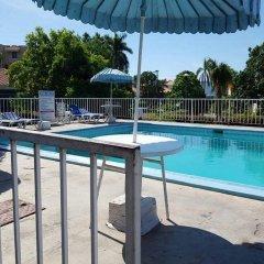 Отель El Greco Resort Ямайка, Монтего-Бей - отзывы, цены и фото номеров - забронировать отель El Greco Resort онлайн с домашними животными
