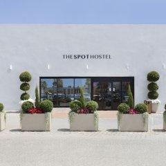 The Spot Hostel Тель-Авив бассейн