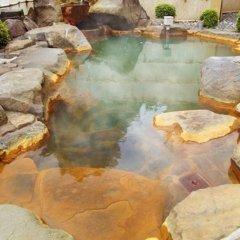 Отель Kadoman Япония, Минамиогуни - отзывы, цены и фото номеров - забронировать отель Kadoman онлайн бассейн