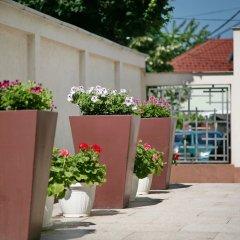 Отель Апарт-Отель Lala Luxury Suites Сербия, Белград - отзывы, цены и фото номеров - забронировать отель Апарт-Отель Lala Luxury Suites онлайн фото 7