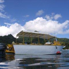 Отель Kosrae Nautilus Resort Федеративные Штаты Микронезии, Косраэ - отзывы, цены и фото номеров - забронировать отель Kosrae Nautilus Resort онлайн приотельная территория