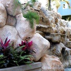 Отель The Wexford Hotel Montego Bay Ямайка, Монтего-Бей - отзывы, цены и фото номеров - забронировать отель The Wexford Hotel Montego Bay онлайн бассейн