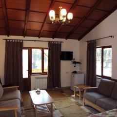 Отель Agartsin Hotel Армения, Дилижан - отзывы, цены и фото номеров - забронировать отель Agartsin Hotel онлайн комната для гостей фото 2
