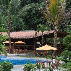 Отель Chachagua Rainforest Ecolodge питание