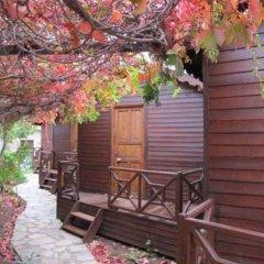 Changa Hotel Турция, Чавушкёй - отзывы, цены и фото номеров - забронировать отель Changa Hotel онлайн фото 8