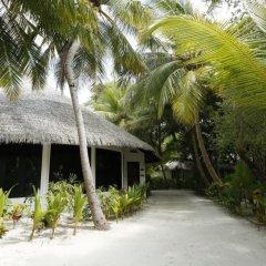 Отель Kihaa Maldives Island Resort фото 2