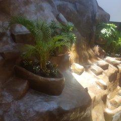 Отель Playa Conchas Chinas Пуэрто-Вальярта фото 3