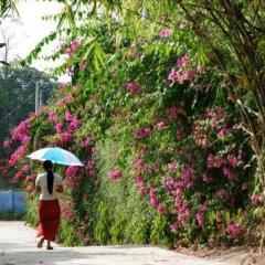 Отель Naung Yoe Motel Мьянма, Пром - отзывы, цены и фото номеров - забронировать отель Naung Yoe Motel онлайн фото 2